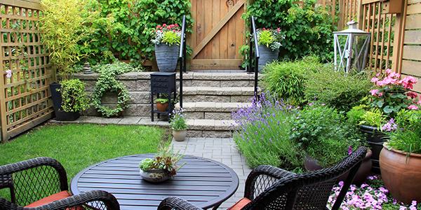 landscaping small garden