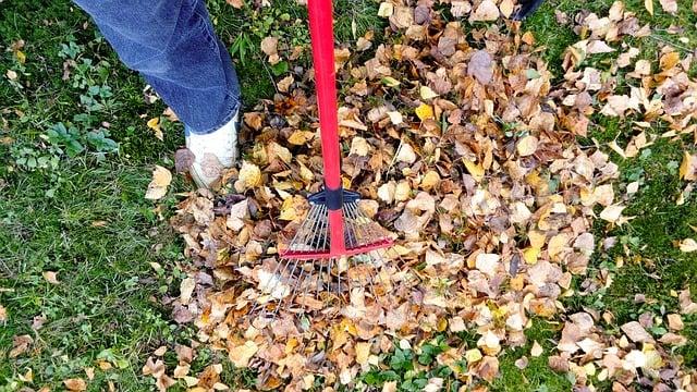 raking-2756006_640